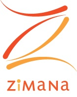 Zimana Web Analytics Blog
